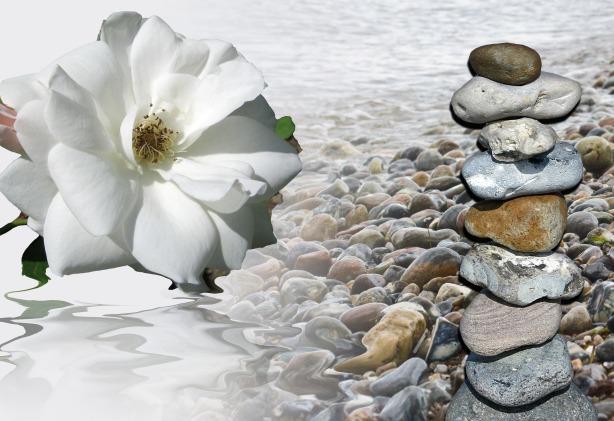 mourning_flower_memory