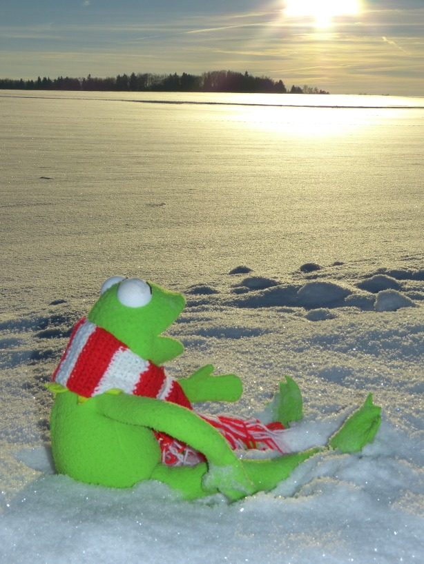 kermit_snow_winter_cold