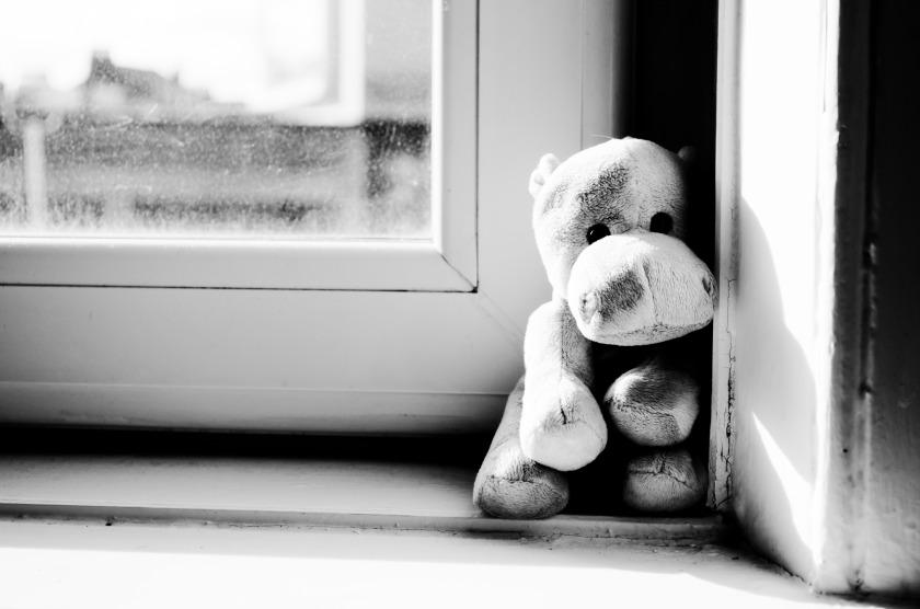 hippo_on_the_window_209014